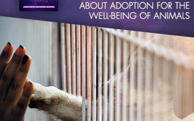 Raising Awareness About Adoption For The Well-Being Of Animals: National Adopt A Shelter Pet Day